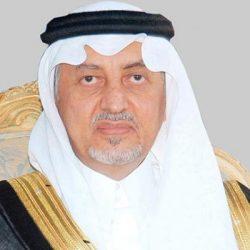 ارتفاع توظيف السعوديات في القطاع الخاص 10 %