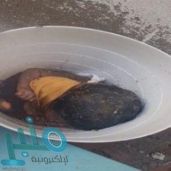 إغلاق ميناءين مصريين بسبب الأحوال الجوية