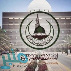 الجوازات تبدأ الأحد تمديد هوية زائر للأشقاء اليمنيين