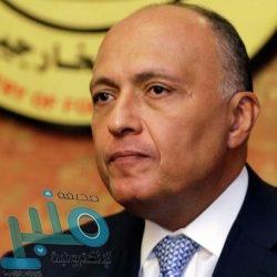 النصر يجهز لصفقتين قويتين في سوق الانتقالات الشتوي