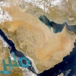 """أمير جازان ونائبه يتسلمان ديوان """"قصائد العزم في عاصفة الحزم"""" للشاعر طاهري"""