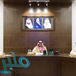 خادم الحرمين يوافق على تشكيل أول مجلس لشؤون الجامعات في المملكة