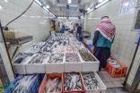 البيئة: ضبط طن و470 كيلوجرامًا من الأسماك الفاسدة في الرياض