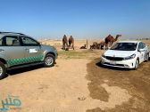 ضبط حظائر لبيع حليب الإبل في المسرة جنوب جدة