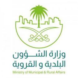 مجلس الوزراء يوافق على ترقية سعد الشهري الى المرتبة الـ14