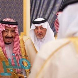 وزارة البيئة تفتح غداً بوابات سد وادي بيدة بالباحة