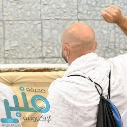 مسالخ ومطابخ الباحة تستقبل أكثر من 1700 أضحية في أول أيام عيد الأضحى المبارك