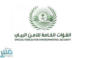 القوات الخاصة للأمن البيئي تضبط موقعًا لبيع الحطب المحلي في الرياض