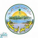 مصادرة 130 كيلوجرامًا من الأسماك الفاسدة في بحر أبو سكينة