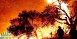 """حريق """"توماس"""" يتسبب في إخلاء سانتا باربرا الأمريكية احترازياً"""