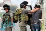 قوات الاحتلال تعتقل ثمانية فلسطينيين من مدينة قلقيلية