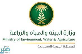 """""""البيئة"""" تصدر توضيحًا بشأن اللائحة التنفيذية والإجراءات المتعلقة بالمقابل المالي للتراخيص"""
