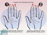 دراسة تكشف علاقة غريبة بين أصابع اليد وتفضيلات الطعام
