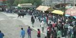 فيديو   إصابة 9 أشخاص بجروح بعد مهاجمة الثيران للمتفرجين في بيرو