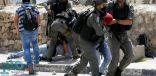 قوات الاحتلال تعتقل سبعة فلسطينيين من محافظتي بيت لحم و جنين