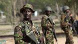أنباء عن قصف مدفعي إثيوبي على الأراضي السودانية