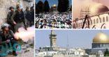 مسئول بأوقاف القدس يحذر من انتهاكات إسرائيل فى المسجد الأقصى ومقبرة باب الرحمة
