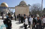 مستوطنون يقتحمون المسجد الأقصى وسط حراسة مشددة من قوات الاحتلال