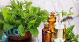 مجموعة أسباب تجعل النعناع أفضل الأعشاب لصحتك