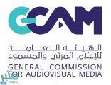 الهيئة العامة للإعلام المرئي والمسموع تصنف وتفسح 342 لعبة إلكترونية