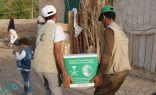 مركز الملك سلمان للإغاثة يوزع 10500 سلة غذائية مخصصة لمحافظة مأرب