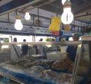 أمانة جدة تتلف أكثر من 7 أطنان من الأسماك الفاسدة داخل السوق المركزي