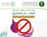 """""""البيئة"""" تحظر مؤقتاً استيراد البصل المصري بسبب تلوثه بالمبيدات"""
