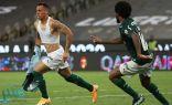 بالميراس يهزم سانتوس ويتوج بكأس ليبرتادوريس ويتأهل إلى كأس العالم (فيديو)
